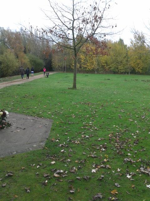 Miloton park