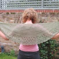an amazing shawl